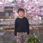 yusuke-sakura